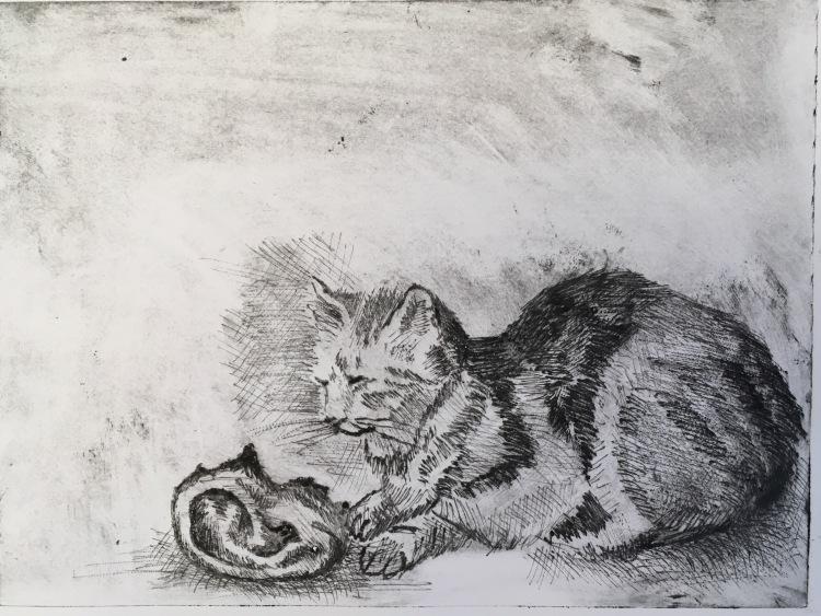 jane-wrenn-murakami-cat